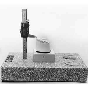 MODEL PLATFORM
